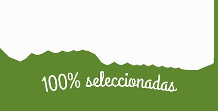 img-left-materias-primas-af